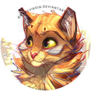 13 Things You Need To Know About Warrior Cats Warrior Cats
