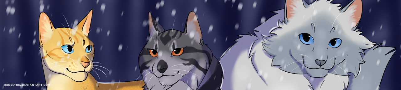 The Journey So Far Lost Stars Warrior Cats
